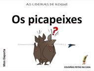 Picapeixes